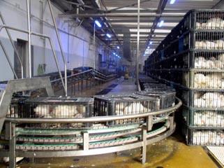řetězové dopravníky s plastovým článkovým řetězem, nerezové provedení